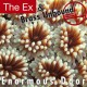 The Ex & Brass Unbound ‎– Enormous Door